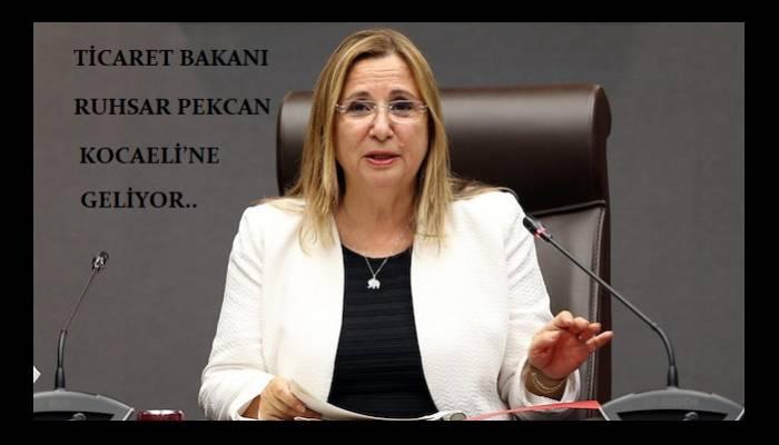 Ticaret Bakanı Ruhsar Pekcan Kocaeli'ne geliyor