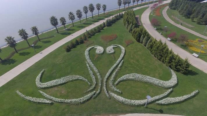 Kocaeli'nin En Güzel Laleleri Bu Festivalde